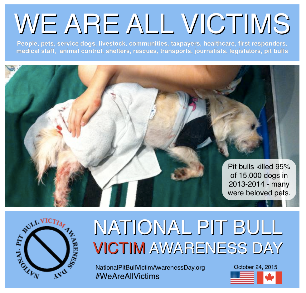Dogs Bite Decatur Al: NATIONAL PIT BULL VICTIM AWARENESS DAY